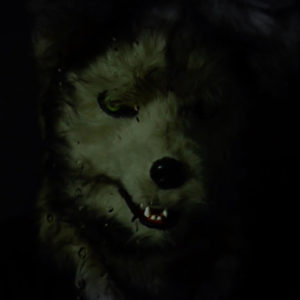 日本オオカミカミ